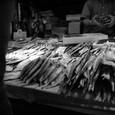 Tsukiji18